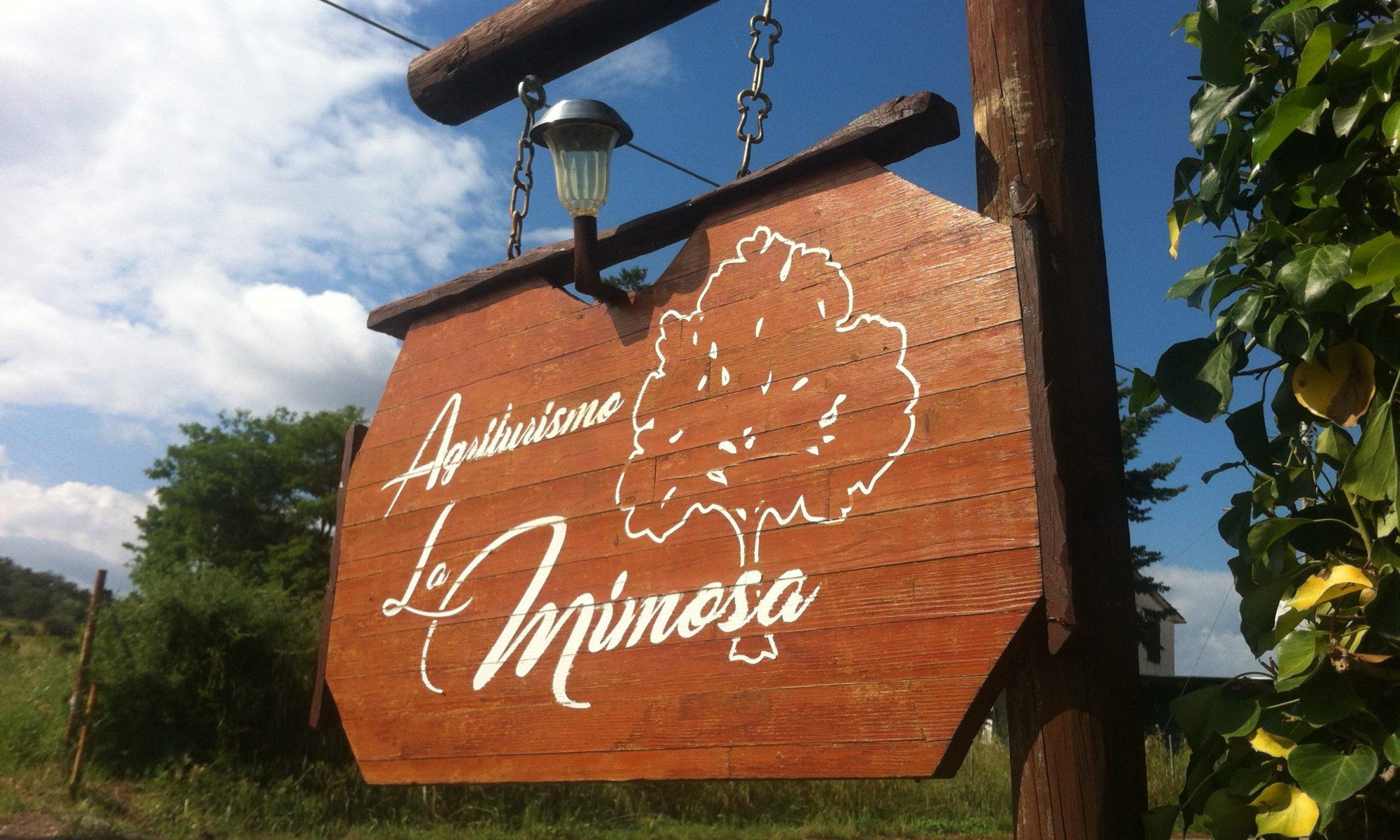 Agriturismo la Mimosa